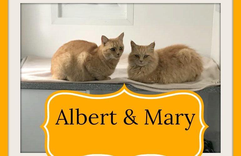 Mary & Albert